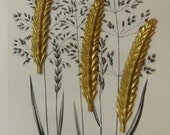 Wheat Grain Large Charm  (2 pc)