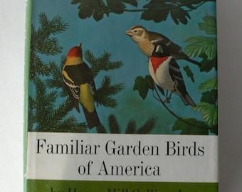 vintage book Familiar Garden Birds of America 1965 from Diz Has Neat Stuff