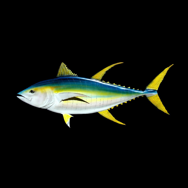 Yellowfin tuna fish wood carving 46 39 39 fish art for Yellow tail fish