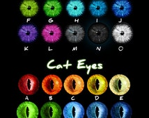 High Gloss Printed Eye Designs (One Set)