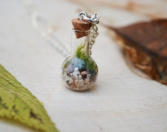 WEIRD SCIENCE Terrarium Necklace with live kentucky moss