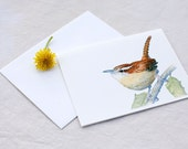 Carolina Wren 6 Blank Notecards Watercolor by Lore Ruttan