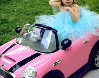 Cinderella Tutu Dress, Light Blue Toddler Tutu Dress