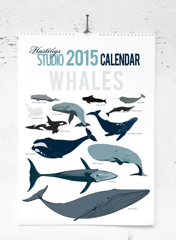 SALE - 50% off was 30 - 2015 Whale Calendar