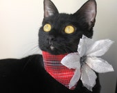 Poinsettia Flower Cat Collar and Red Plaid Modern Accessory