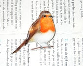 Hand- drawn and coloured Robin brooch, bird brooch. Christmas Stocking Filler