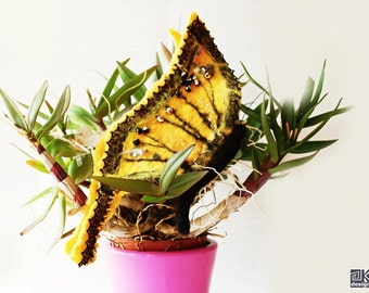 Yellow Butterfly brooch, spring accessory, gift for her, swallowtail brooch, yellow and black, ooak