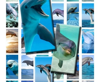 Dolphin Porpoise Wild Ocean Sea Animal Digital Images Collage Sheet 1x2 inch Rectangles Domino Commercial INSTANT Download RD26