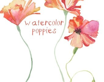 Poppies clipart | Etsy