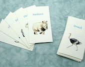 20 Translation flash cards - Exotic Animals - English-Russian, English-French, English-German