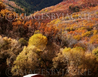 Autumn Barn Fine Art Photography Digital Download