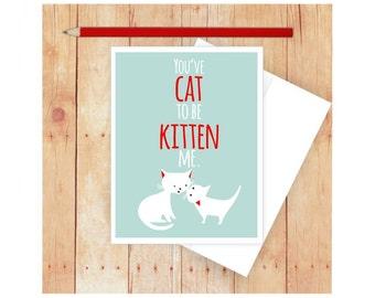 Cat Stationery, Cat Birthday Card, Funny Greeting Card, Kitten Birthday, Blank Note Card, Cat Lover Gift,Funny Birthday Card, Funny Pun Card