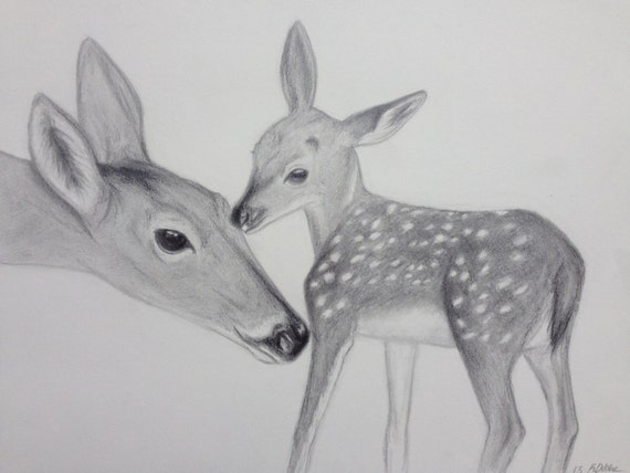 items similar to doe and fawn deer pencil drawing 9x12 on etsy