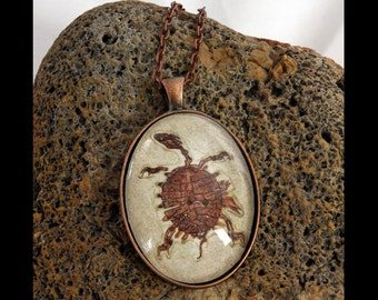 Green River Fossil Turtle Photo Pendant Necklace
