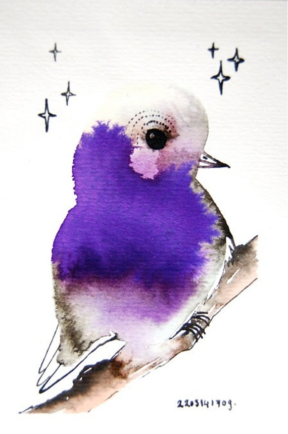 Original bird drawing bird a day by saldi breton door birdaday - In kennis gesteld saldi ...