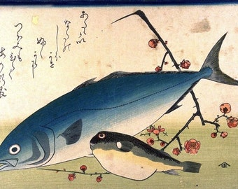 Yellow tail or Amber Jack and Puffer or blow fish Japanese woodblock print reproduction Hiroshige