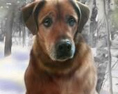 Custom Pet Portrait on Canvas 20 x 20 inches, lifelike Memorial portrait, realistic digital pet portrait, best pet portrait