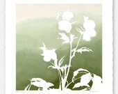 Limited edition botanical print with hand torn edges - Lenten Rose No. 5