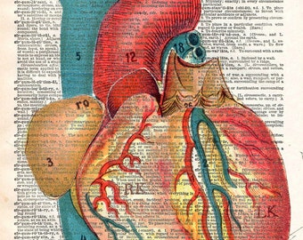Vintage Book Art Print - Anatomical Heart Art - Upcycled Book Print - Love Heart - Anatomical Medical Diagram - Dictionary Art Print