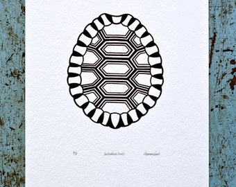 Tortoise Shell / Testudines 'specimen' (noir) - Limited edition one-colour screenprint