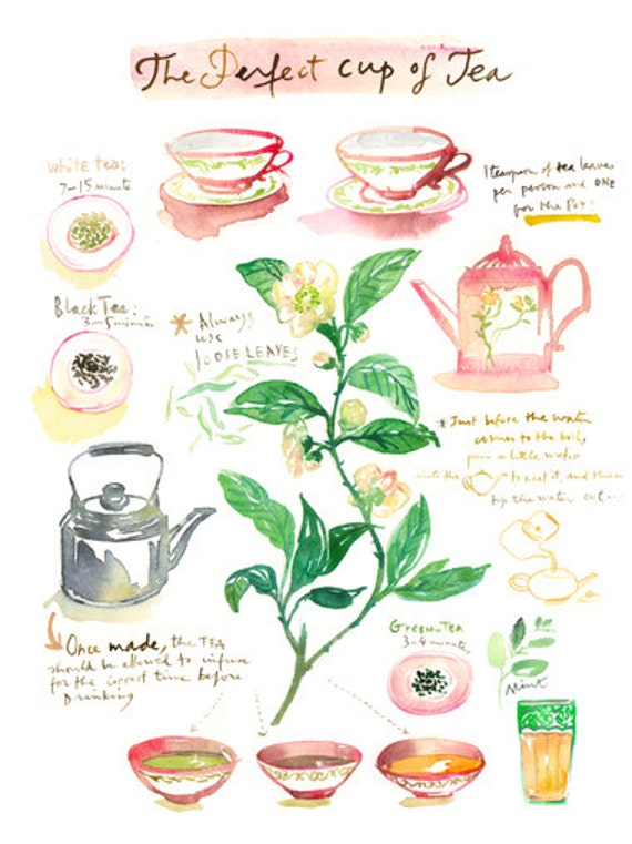The perfect Cup of Tea, Tea poster, Watercolor painting, Kitchen print, Teapot illustration, Botanical tea plant, Green Pink 8X10 home decor