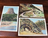 Vintage Wyoming Postcards (lot of 3) Yellowstone National Park, WY - Big Horn Mountains - Devils Tower