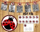 Ladybug 12 month Photo Birthday Banner Girl Ladybug 1 year Picture Banner Girl 1st birthday party decorations Red (DIY Printable PDF File)