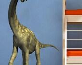 Dinosaur Animals Kids Childrens Nursery Nature - Full Color Wall Decal Vinyl Decor Art Sticker Removable Mural Modern B198