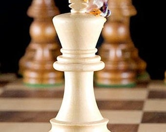 Chess King - Chess Board and Frog Photo, Playing Chess