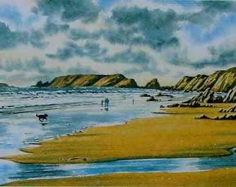 Marloes Sands, Gateholm and Skokholm Islands. Pembrokeshire. Seascapes, Beaches, Wildlife, Birds, Woodland and Flower Originals and prints.