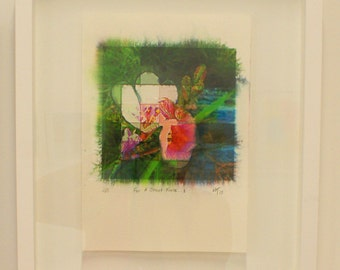 limited edition signed and numbered Flower print