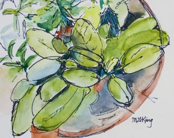 Botanical Painting of Sage, Rosemary & Thyme