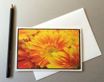4x6- Orange Gerber Daisy Greeting Card