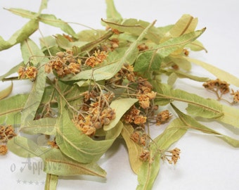 Greek dried organic Tilia europaea, Linden herb  30gr.