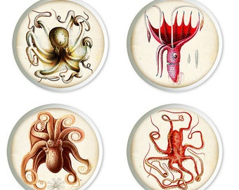 Ceramic Octopus Knobs or Pulls for Furniture or Cabinets  Set of 4