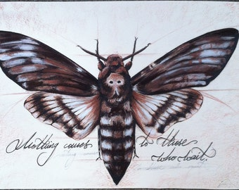 Original or print from my original deathmoth illustration