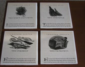 Harry Potter Coaster Set: PB Books