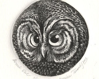 Boreal Owl. Etching. Hand-pulled original print. Owl print. Limited edition print.