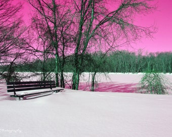 Bench in Pink Sky