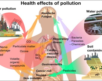 24x36 Poster; Health Effects Of Pollution On Humans