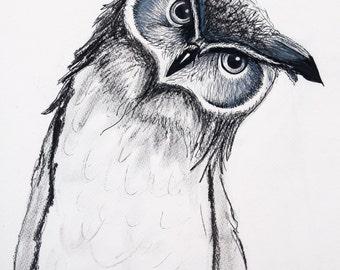 Owl Olivia, Illustration, PRINT, A3