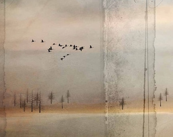 Geese Flying Over Water, fine art print.