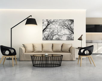 Canvas Print - TREE BRANCHES  - (10601)