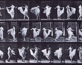 Eadweard Muybridge Photo, Motion Study, Woman Twirling, 1880s, 17x11""