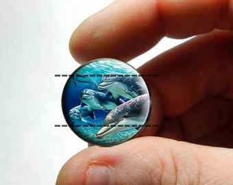 Glass Cabochon - Dolphin Gang - for Jewelry and Pendant Making