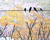Santa Monica - Original Map Painting 9 x 15 - Birds and branches