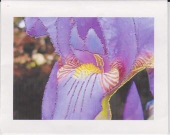 Purple Iris Handmade Greeting Card Set