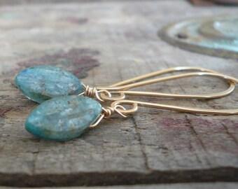 Sway Earrings. Leaves - Handmade. Hand forged. Kyanite. 14kt Goldfill Earrings