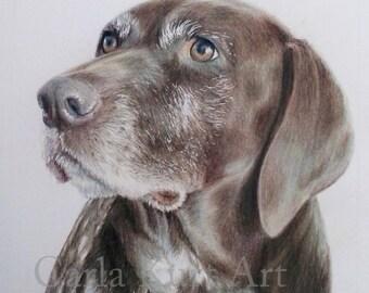 Custom Pet Portrait, dog portrait 8 x 10 cat dog horse memorial, best etsy shop, top etsy seller best selling item