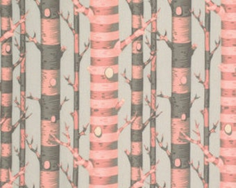 Tula Pink's  Forest Stripe in Sorbet, Bumble collection, 1/2 Yard